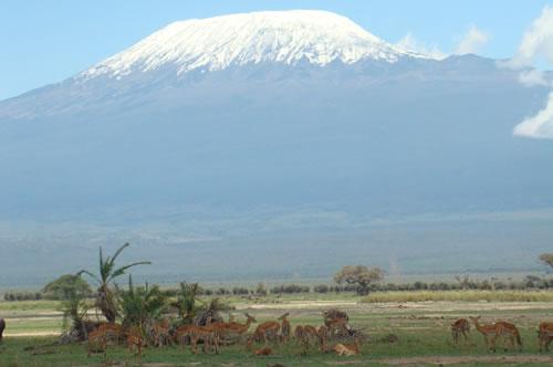 Mount kilimanjaro amboseli