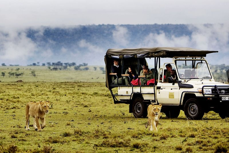 Game drives and game 1