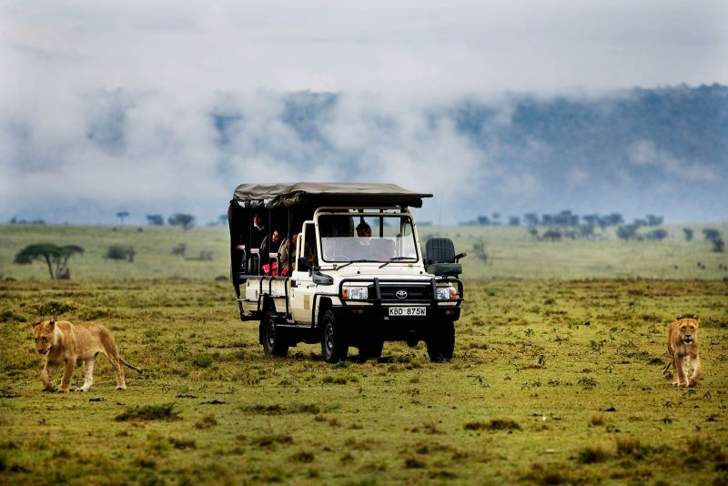 Game drives and game 2