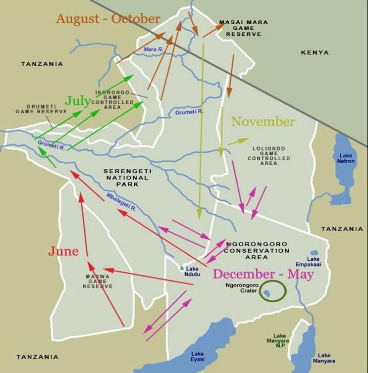wildebeest-migration-kort